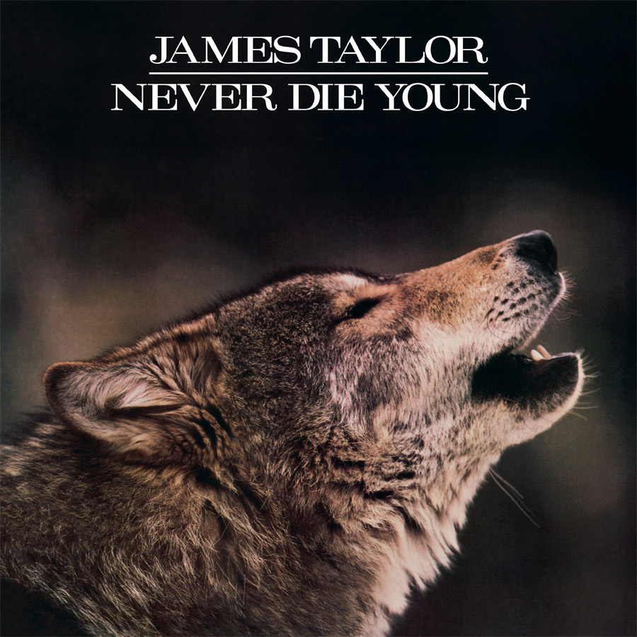James Taylor - Never Die Young (180 Gram Audiophile Vinyl/Ltd. Edition/Gatefold Cover)