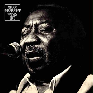 Muddy Waters - Live (180 Gram Audiophile Vinyl/Ltd. Anniversary Edition/Gatefold Cover)