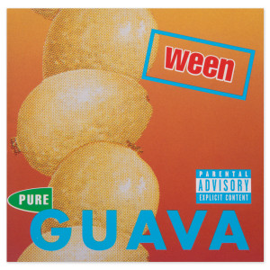 Pure Guava MP3