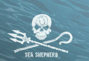 $5 Donation to Sea Shepherd Conservation Society