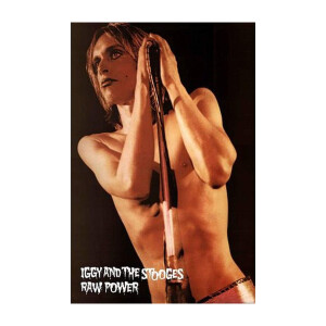 Iggy and the Stooges ® Poster