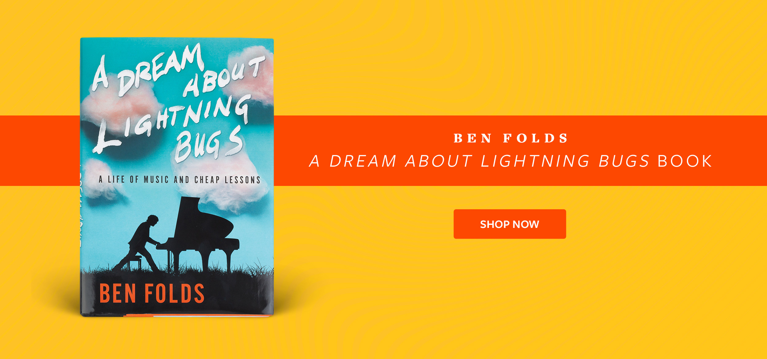 A Dream About Lighting Bugs Book - Available Now