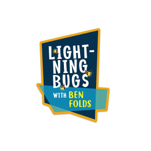 Lightening Bugs Die Cut Sticker