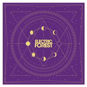 Moon Phases Bandana - Purple