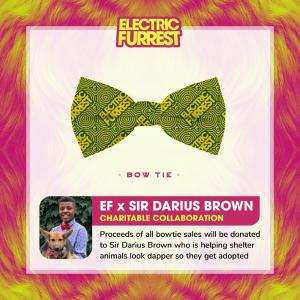 Sir Darius Brown x Electric Furrest Pet Bow Tie