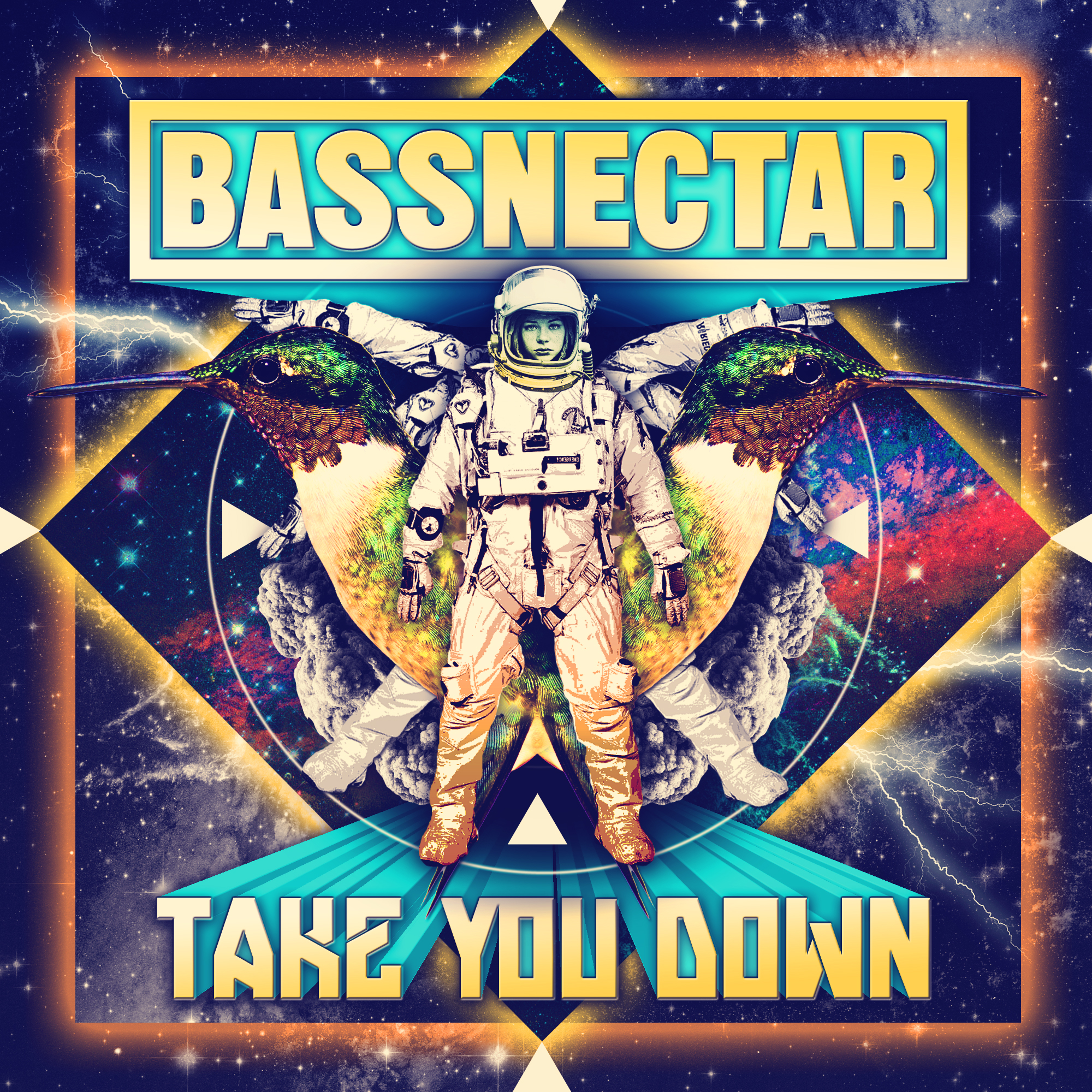 Bassnectar - Take You Down Download