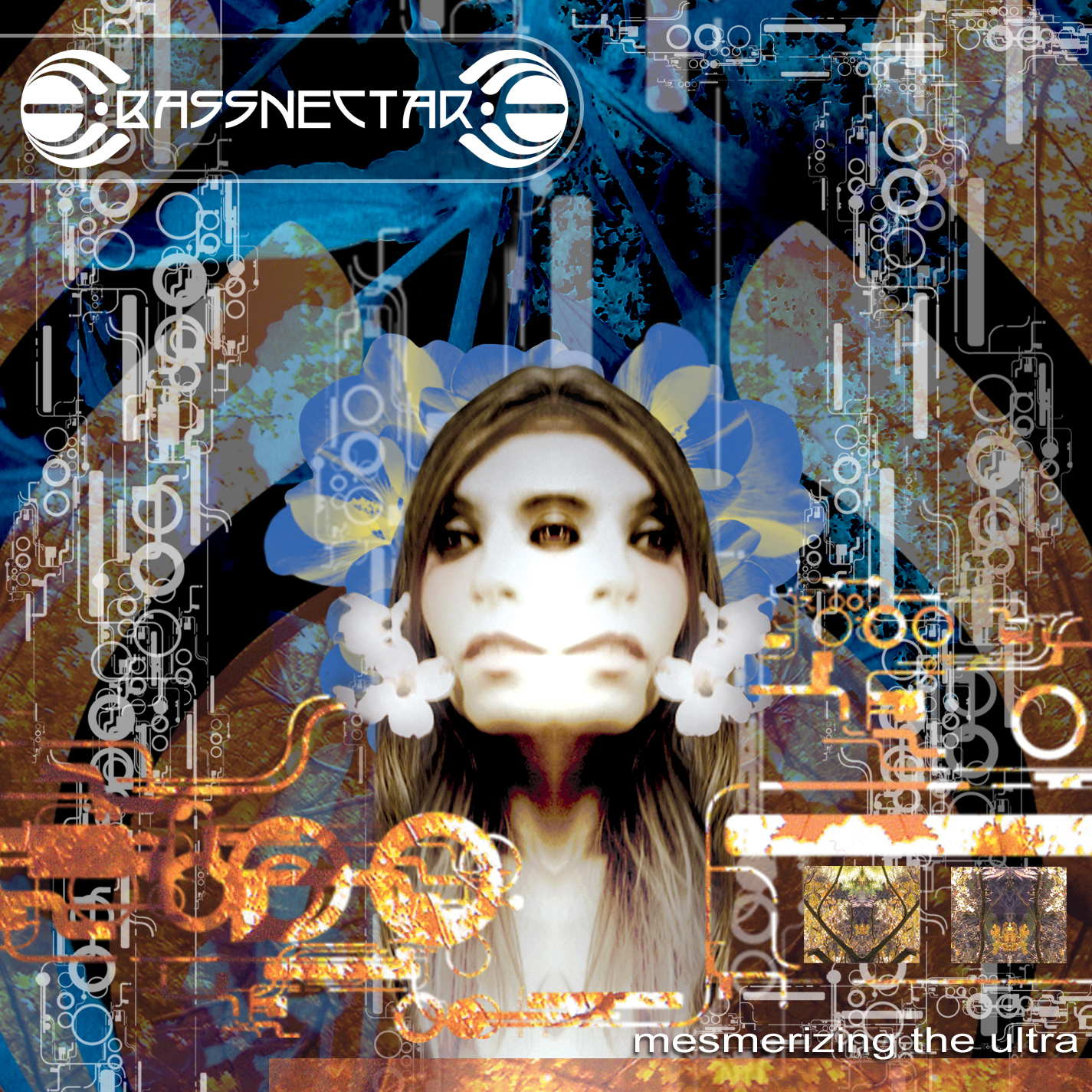 Bassnectar - Mesmerizing the Ultra Download