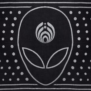 Alien Pashmina
