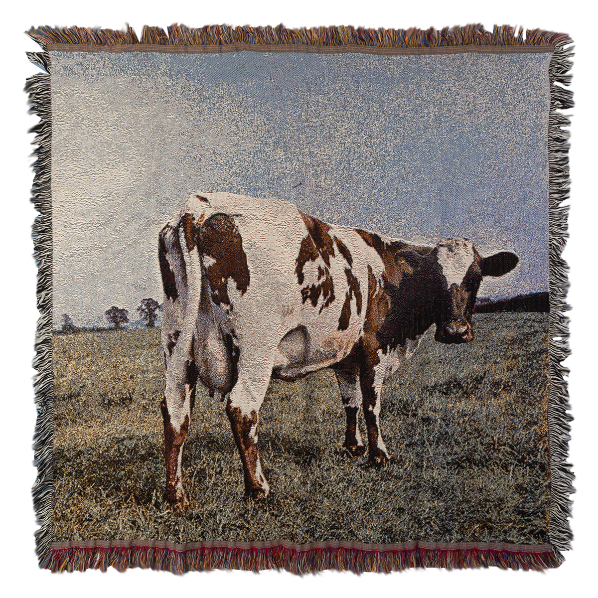 Atom Heart Mother Throw Blanket
