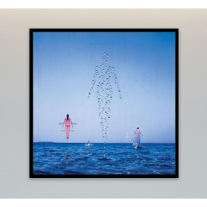 Shine On Canvas Wall Art