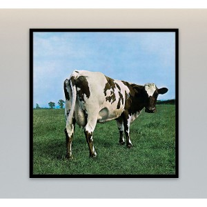 Atom Heart Mother Canvas Wall Art