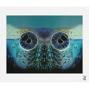 Pulse Owl Eyes Fine Art Print
