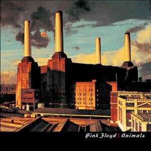 """Pink Floyd Animals 4""""x4"""" Sticker"""