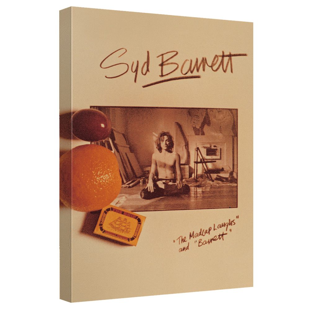 Syd Barrett/Madcap Laughs-Canvas Wall Art With Back Board-White-[20 X 30]