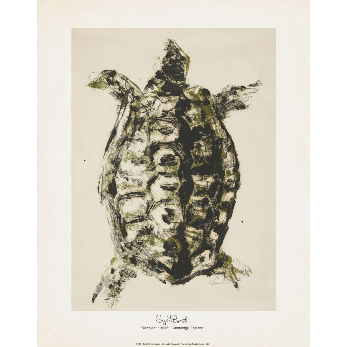 Tortoise 11x14