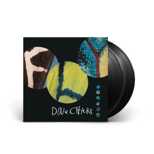 Dixie Chicks: Fly LP