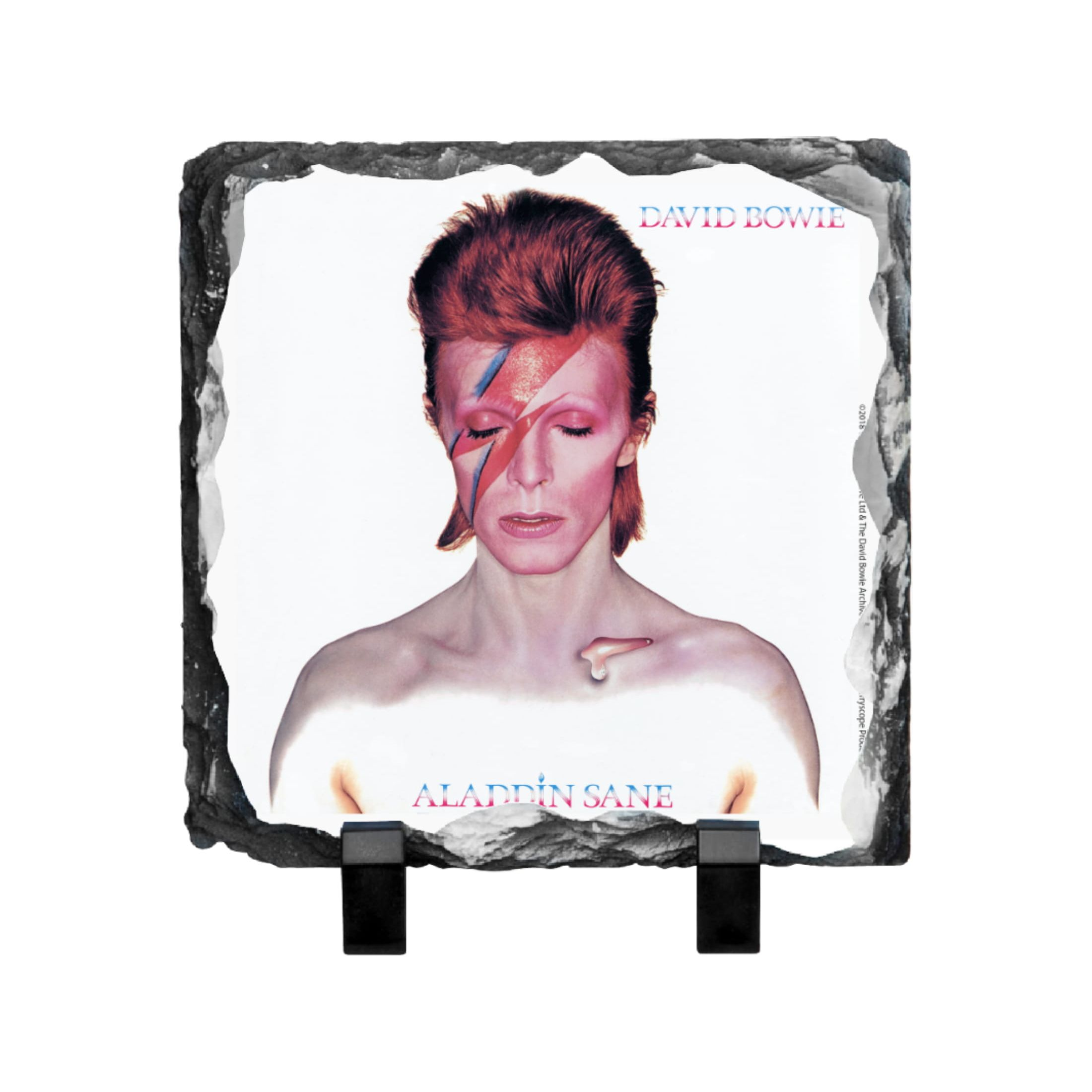 Aladdin Sane Photo Slate