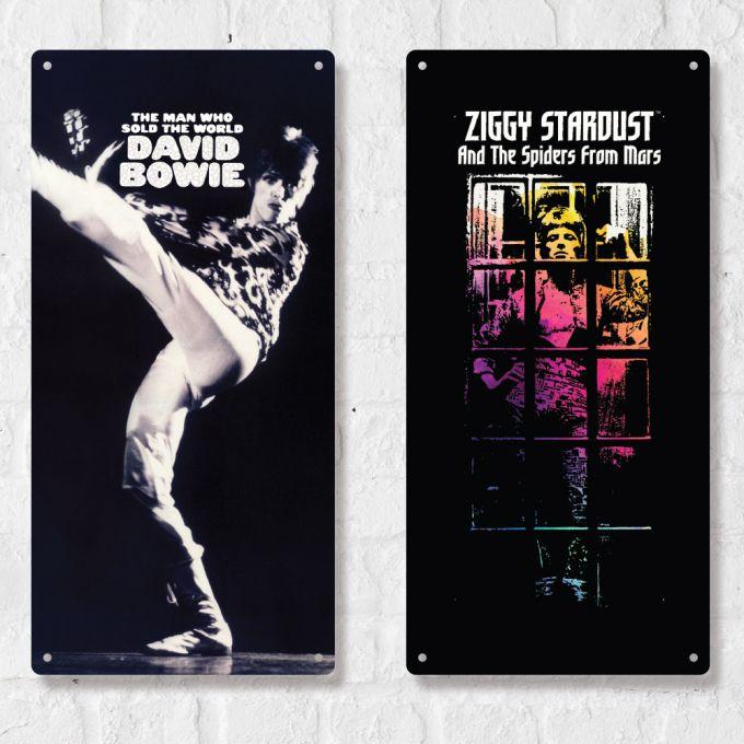 David Bowie Large Plate Print - Ziggy Stardust