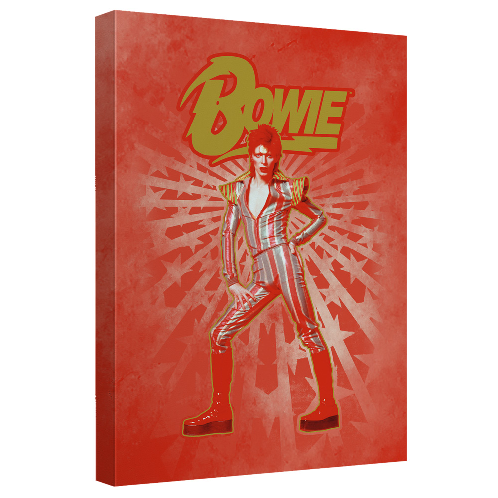 David Bowie/Stars - Canvas Wall Art With Back Board - White [20 X 30]