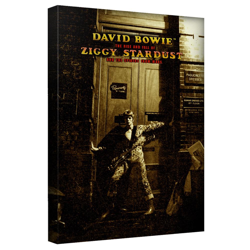 David Bowie/Ziggy Stardust Alternate Art-Canvas Wall Art With Back Board - White [20 X 30]