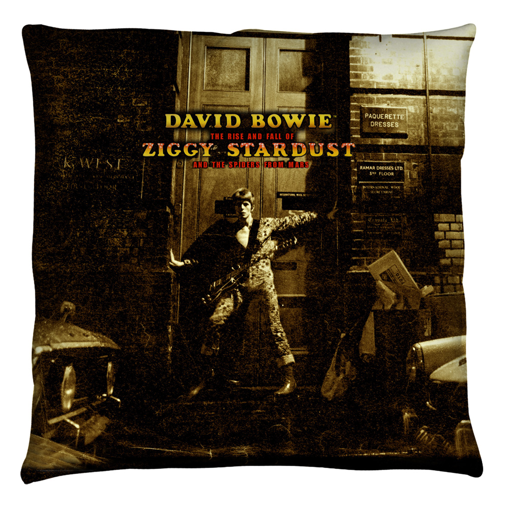 David Bowie/Ziggy Stardust Alternate Art  - Throw Pillow [16 X 16]