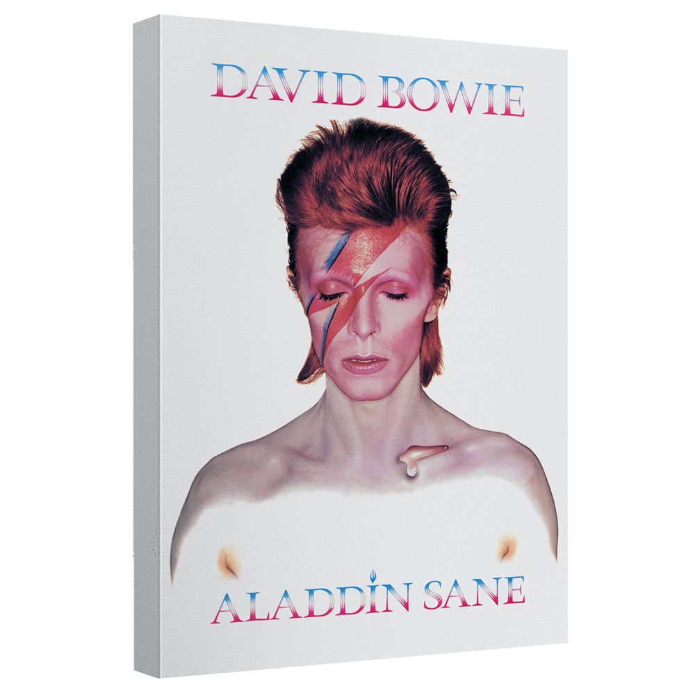 David Bowie/Aladdin Sane - Canvas Wall Art With Back Board - White [20 X 30]