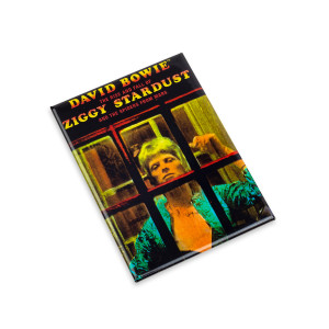 David Bowie Ziggy Stardust Magnet