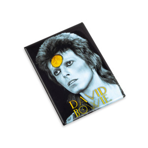 David Bowie BW Yellow Magnet