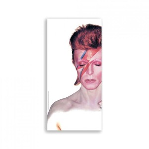 David Bowie Large Plate Print - Aladdin Sane