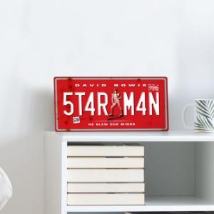 David Bowie Plate Print - Starman