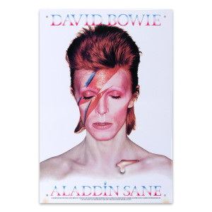 David Bowie Aladdin Sane Tin Sign