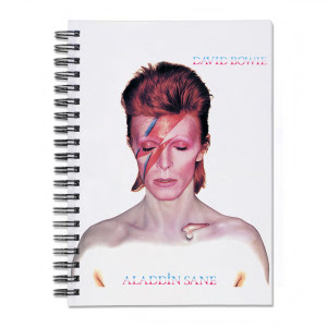 Aladdin Sane Journal