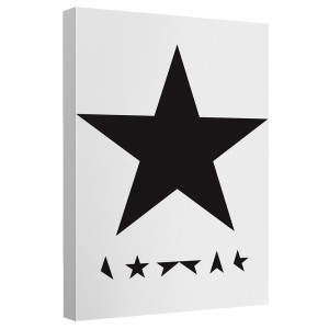 David Bowie/Blackstar - Canvas Wall Art With Back Board - White [20 X 30]
