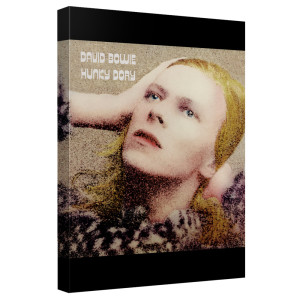 David Bowie/Hunky Dory - Canvas Wall Art With Back Board - White [20 X 30]