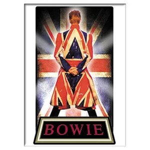 """David Bowie Earthling 2.5""""x3.5"""" Magnet"""