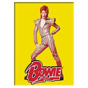 "David Bowie Pose 2.5""x3.5"" Magnet"