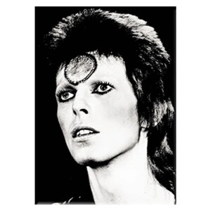 "David Bowie Black & White 2.5""x3.5"" Magnet"