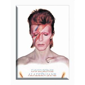 "David Bowie Aladdin Sane 2.5""x3.5"" Magnet"