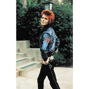 "David Bowie Poise 3.5""x5.5"" Sticker"