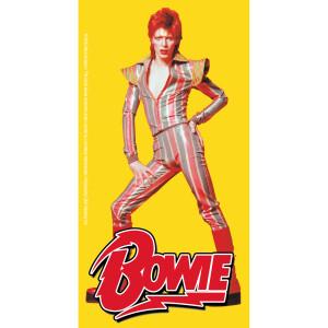 "David Bowie Pose 3""x5.75"" Sticker"