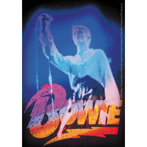 "David Bowie Live 3.4""x5.2"" Sticker"