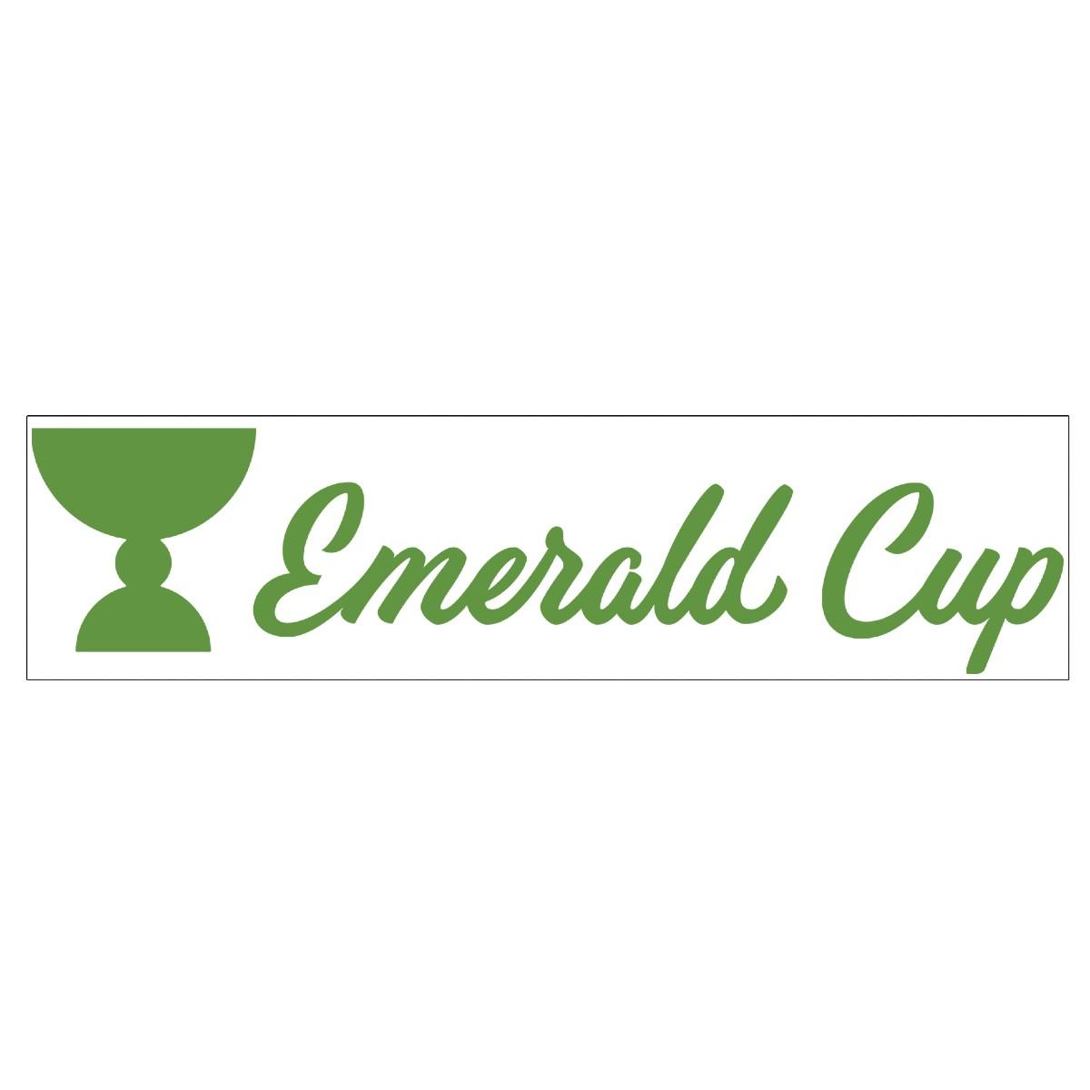 EMC Logo Sticker
