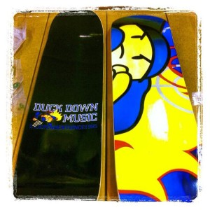 Duck Down Skateboard Deck