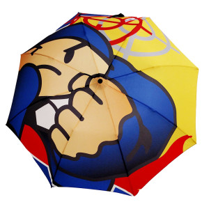 Duck Down Umbrella