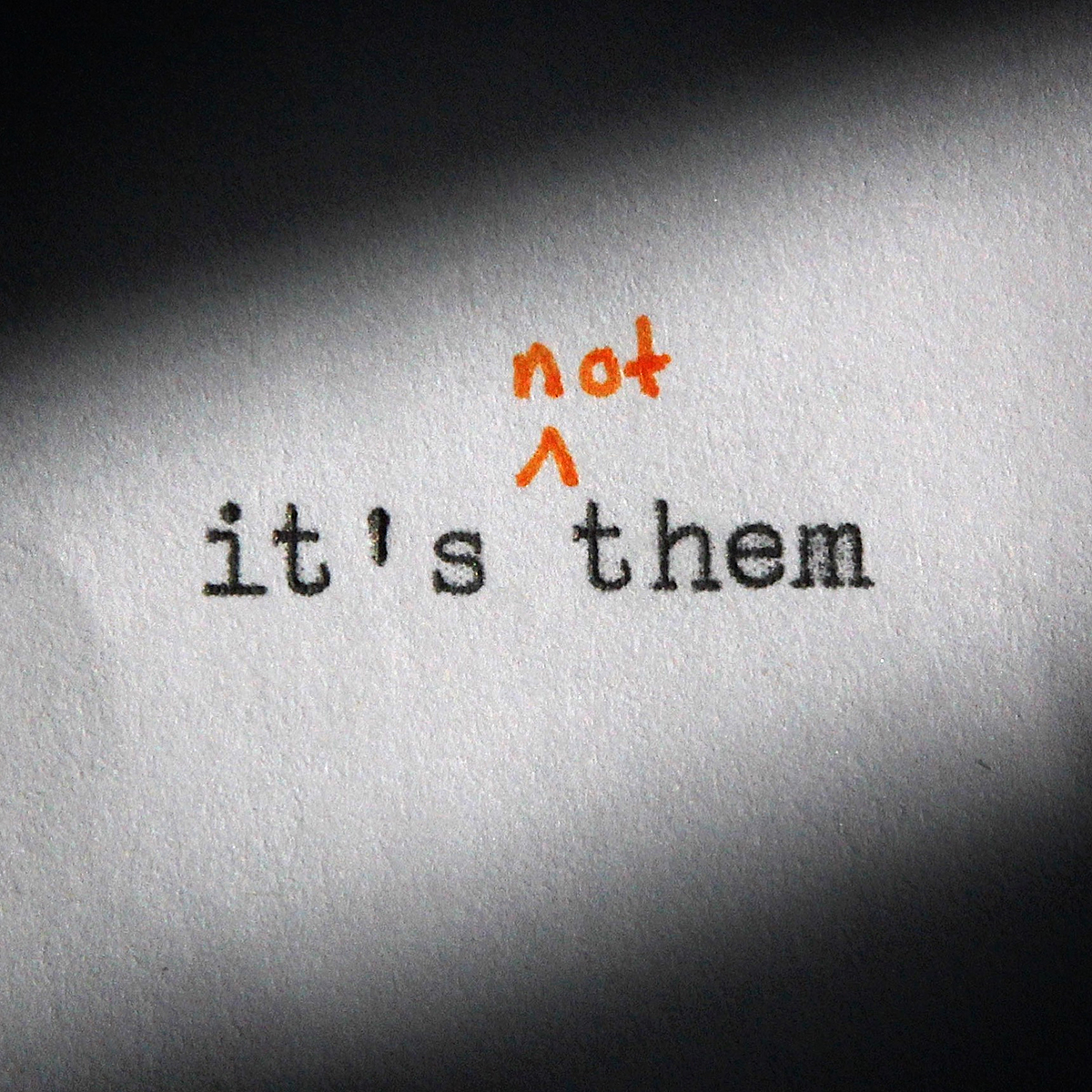 it's not them Digital Download