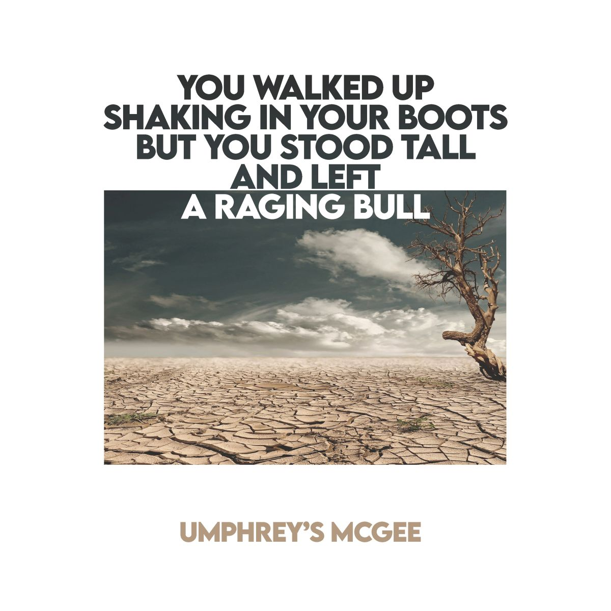 YOU WALKED UP SHAKING IN YOUR BOOTS BUT YOU STOOD TALL AND LEFT A RAGING BULL Digital Download