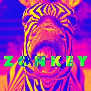 Umphrey's McGee - ZONKEY - Can't Rock My Dream Face