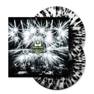 Hall Of Fame: Class of 2013 Vinyl