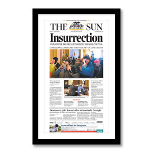 """""""Insurrection"""" 1/7/2021 Page Print"""