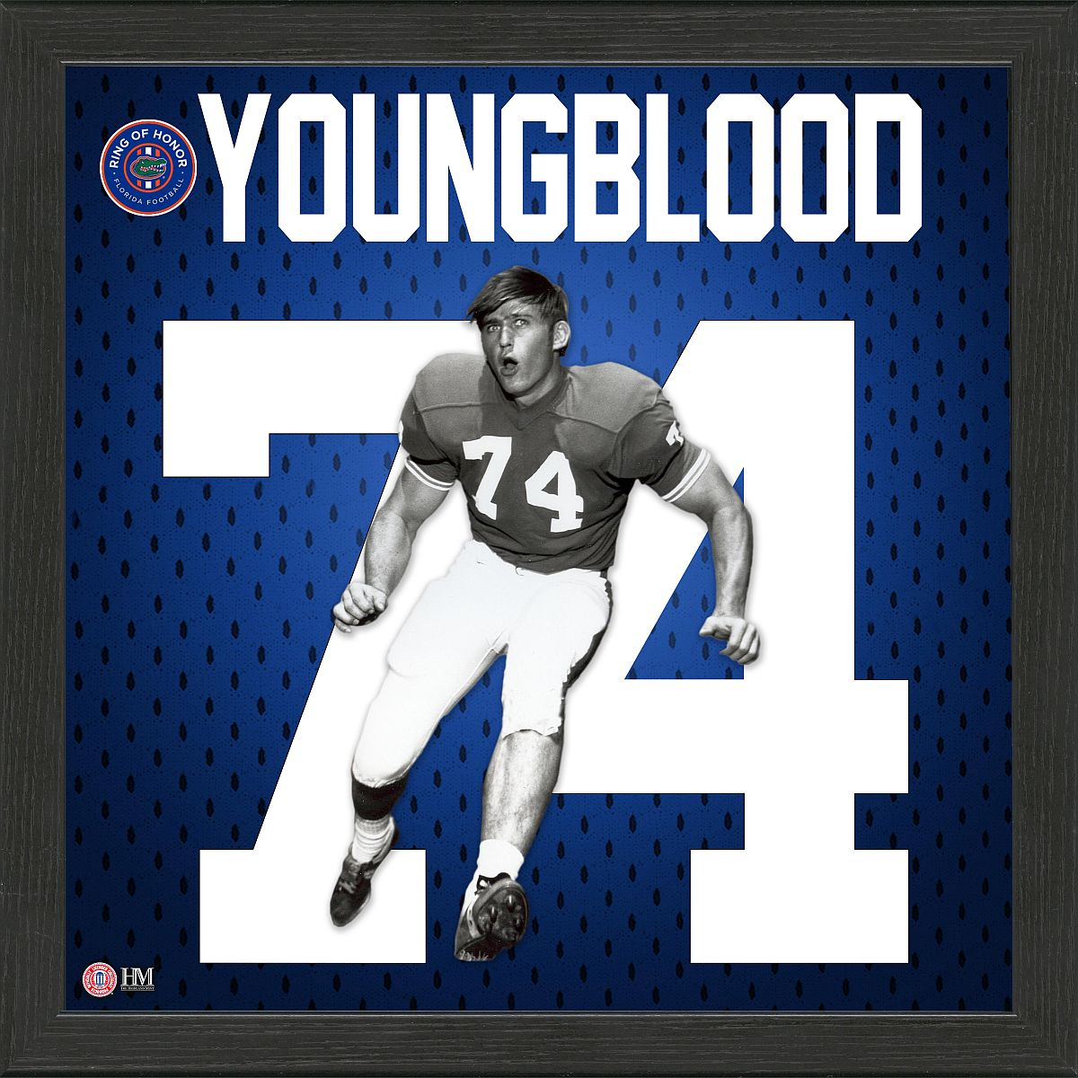 Jack Youngblood ROH Jersey Framed Photo